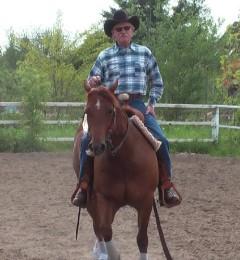 Bestehend aus Trailarbeit, Reining-Elementen u. Ranchhorse-Pleasure.